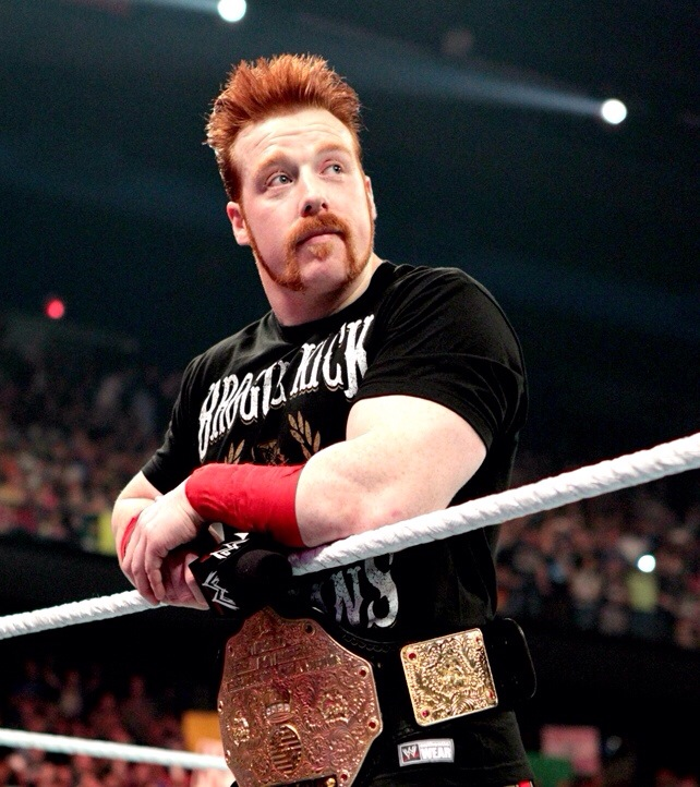wwe superstars nude on twitter sheamus and a great view
